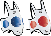 Hogu Chest Protector -  Red/Blue Reversible
