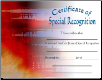 Special Recognition Certificate - Pack of 10 (SKU: CER-20)