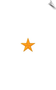 "1"" Star Patch - 10 Pack"