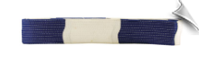 2 Inch Deluxe Panel Belt - Blue and White