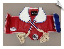 Reversible TKD Chest Guard